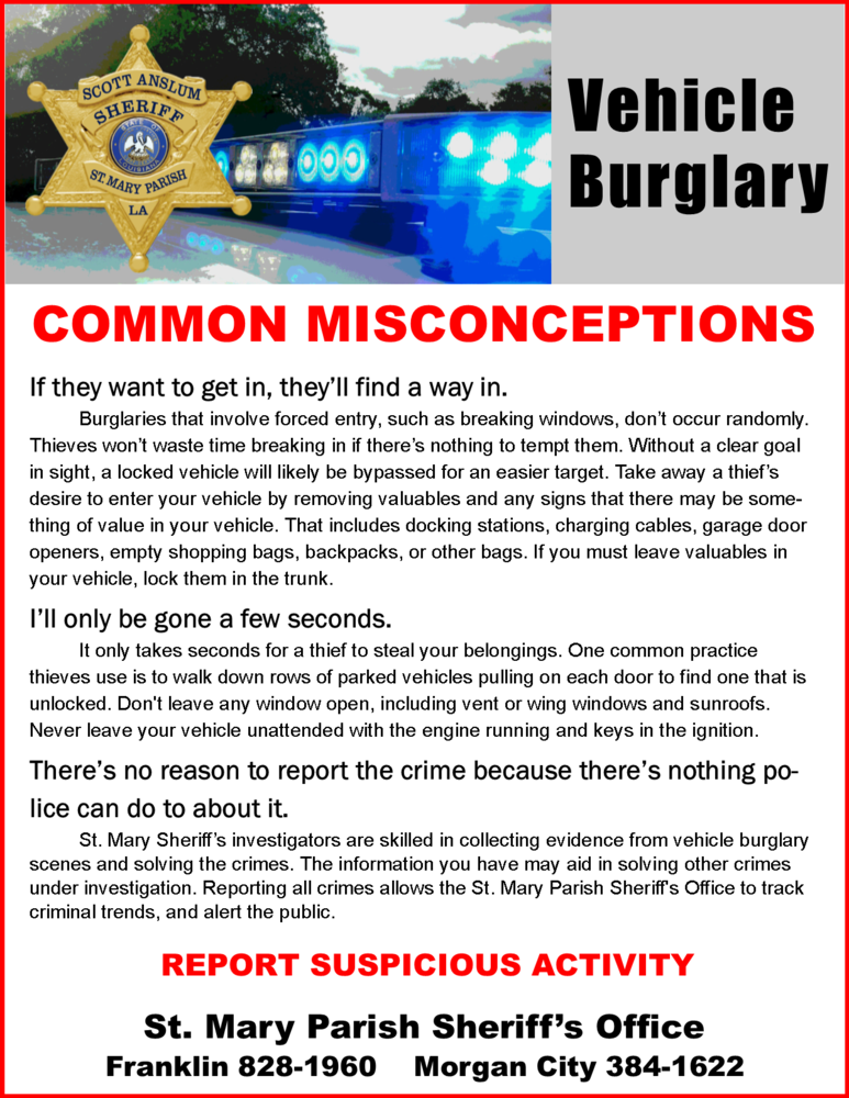 Vehicle Burglary Prevention Fact Sheet February 2018 .png
